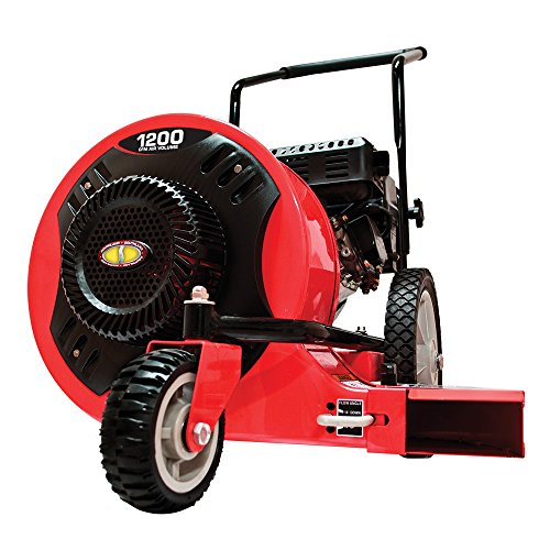 Leaf Blower with 163cc, 6.5 foot-pound, OHV Engine (Walk Behind Blower)