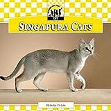 Singapura Cats, Kristin Petrie, 1617838675
