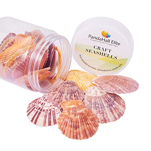 (PH PandaHall 1Box (About 25pcs) Scallop Sea Shells Seashells Charms for Craft Making, Home Decoration, Beach Party, Fish Tank and Vase Fillers (Light))