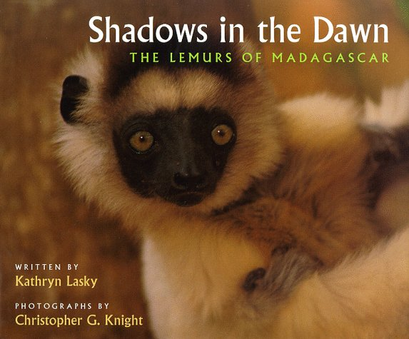 Shadows In The Dawn  The Lemurs Of Madagascar