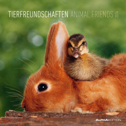 Tierfreundschaften 2014 Broschürenkalender