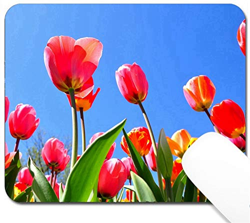 MSD Mouse Pad with Design - Non-Slip Gaming Mouse Pad - Image ID 19452124 Colorful Tulip Garden in Boston Public Garden USA