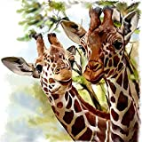DIY 5D Diamond Painting Number Kits Round Drill Rhinestone Embroidery Cross Stitch Pictures Arts Craft Home Wall Decor 12x12In Two Giraffes