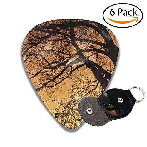 Silhouette Of A Willow Tree With The Sun Behind The Tree Stylish Celluloid Guitar Picks Plectrums For Guitar Bass .6 Pack -