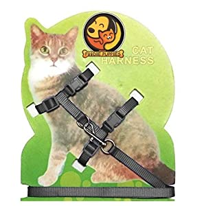 Foodie Puppies Body Harness Set for Cats with Adjustable Nylon Leash (Color and Pattern May Vary)