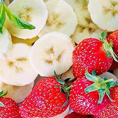 Prozis 100% Real Whey Protein, Suplemento Puro en Polvo con un Perfil Completo de Aminoácidos y Rico en BCAA, Fresa-plátano - 1000 g: Amazon.es: Salud y cuidado personal