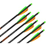 "Wicked Ridge by TenPoint Crossbows 18"" Ranger Carbon Crossbow Arrows (6 Pack) (HEA-201.6)"