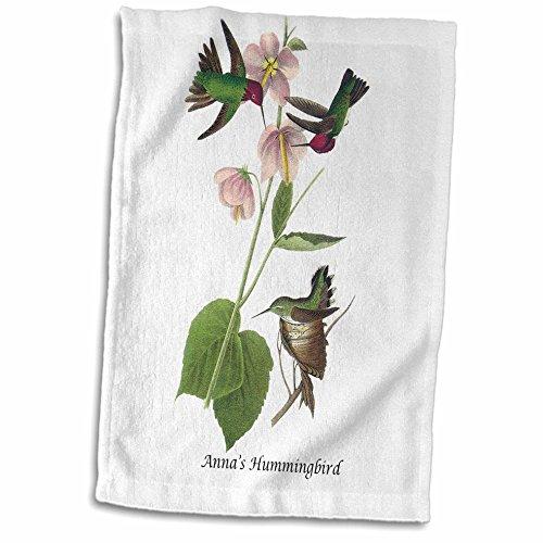 3dRose 3D Rose Annas Hummingbird by John James Audubon Hand/