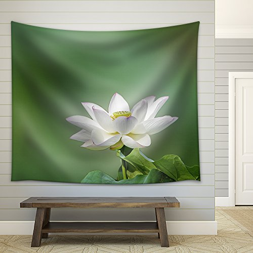 a Bloom Lotus with Seed and Leaf in Summer Fabric Wall