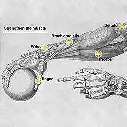 DecentGadget Force Ball Power Gyroscope Spinner Wrist Forearm Exerciser Powerball Strengthener