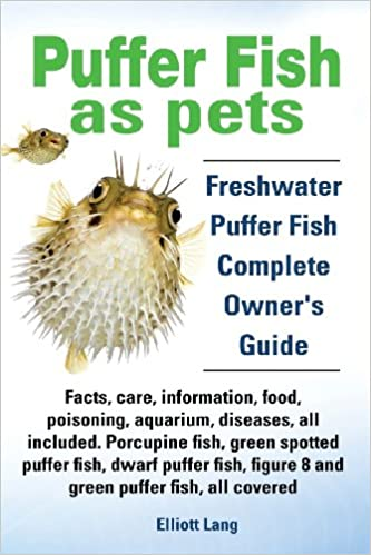Puffer Fish as Pets. Freshwater Puffer Fish Facts, Care, Information ...
