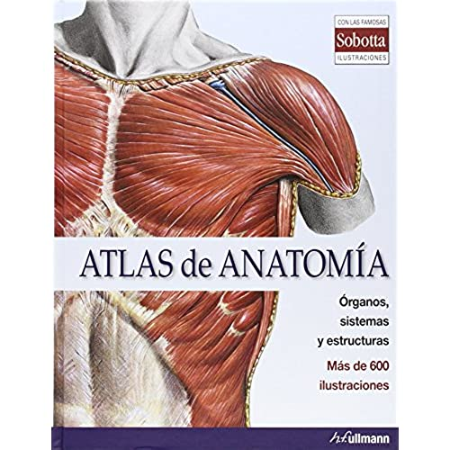 Atlas Anatomia: Amazon.es