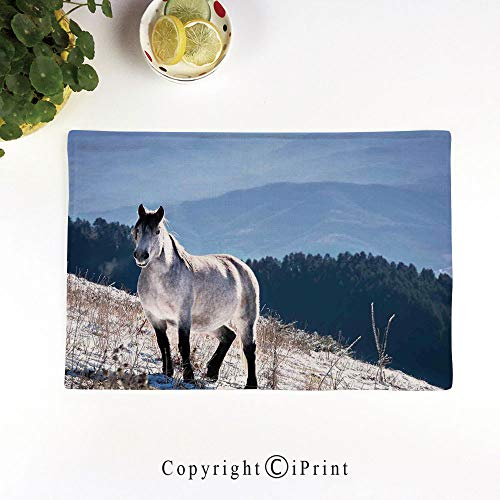LIFEDZYLJH Place Mats Set of 6,Washable Fabric Placemats for Dining Room Kitchen Table Decoration,Horse on Snowy Mountains Noble Body Wild Animals in Wilderness of Human Nature,White Green Blue
