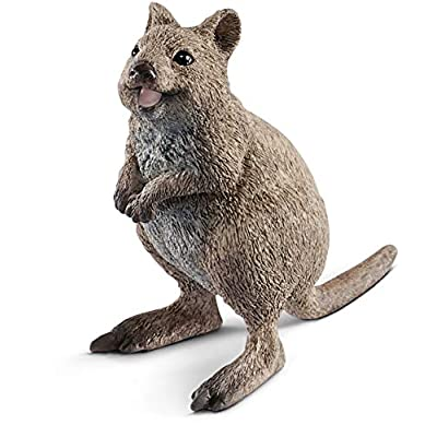 SCHLEICH Wild Life Quokka Educational Figurine for Kids Ages 3-8: Toys & Games