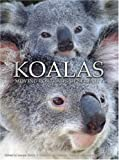 Koalas: Moving Portraits of Serenity