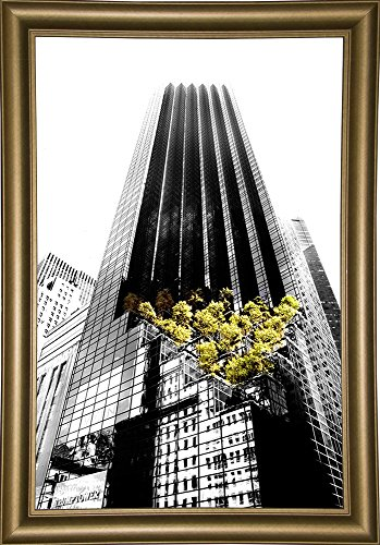 Trump Tower NYC Print by Harold Silverman