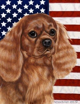 Cavalier Ruby - Cavalier King Charles Ruby- Best of Breed Patriotic II Garden Flags