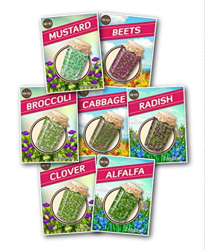 Homegrown Cabbage (Zziggysgal – Organic Culinary Sprouting Seeds (Set of 7 Varieties) – Including Alfalfa, Brocolli, Radish, Cabbage, Clover, Beets and Mustard – Keeping Nutrition Fully Home Grown and Organic)