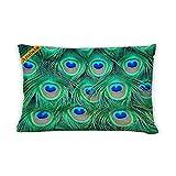 Artsbaba Pillowcases Pavo Cristatus Peacock Zipped Pillowcase Decorative Throw Pillow Cover 20''x30''