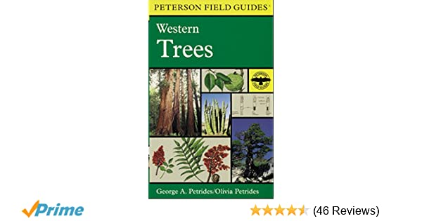 A field guide to western trees western united states and canada a field guide to western trees western united states and canada peterson field guides george a petrides roger tory peterson olivia petrides fandeluxe Images