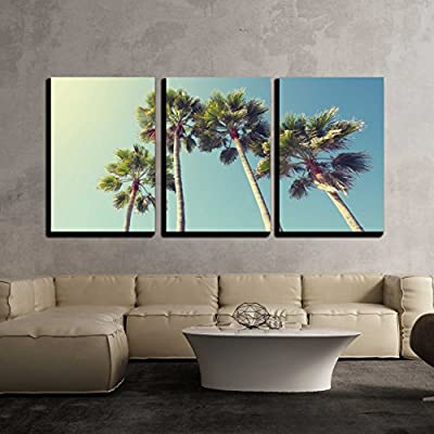 3 Piece Canvas Wall Art - California Palm Trees in Vintage Style. - Modern Home Art Stretched and Framed Ready to Hang - 16
