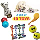 Dog Toys Set Ball Rope and Chew Squeaky Toys for Small Medium Dog~10 Pack Review