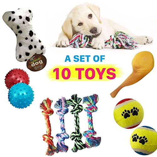 Cheap Dog Toys Set Ball Rope and Chew Squeaky Toys for Small Medium Dog~10 Pack
