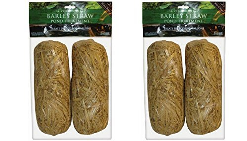 (Summit 130 Clear-water Barley Straw Bales DmsqWj, 4 Bales)