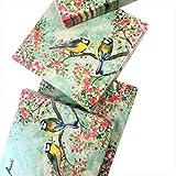 20-ct Robin Napkins   Bird Paper Napkins