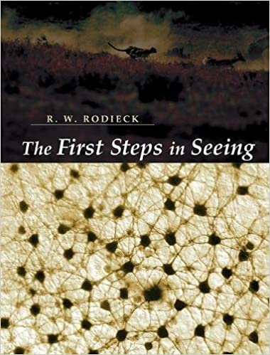 The First Steps in Seeing by R. W. Rodieck