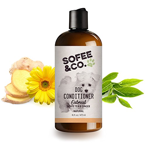 Sofee & Co. New Natural Oatmeal Dog/Puppy Conditioner, White Tea & Ginger - Gently Soothe Soften moisturize Dry Itchy Flaky Allergy Sensitive Skin. Detangle. Prevent Mattes. 16 oz.