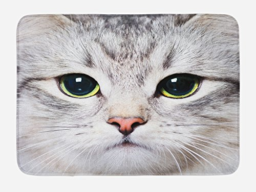 Ambesonne Cat Bath Mat, Cat Print Kitten Kitty Closeup Portrait Digital Photography Domestic Pet, Plush Bathroom Decor Mat with Non Slip Backing, 29.5 W X 17.5 L Inches, Grey Ivory (Portrait Cat Christmas Family)