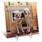 3dRose Sandy Mertens Christmas Animals - Two Golden Retrievers in Santa Hats by the Fireplace - 6x6 Desk Clock (dc_269522_1)