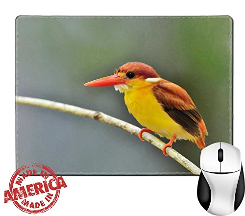 "Luxlady Natural Rubber Mouse Pad/Mat with Stitched Edges 9.8"" x 7.9"" IMAGE ID 31333271 Bird Rufous backed Kingfisher Thailand"