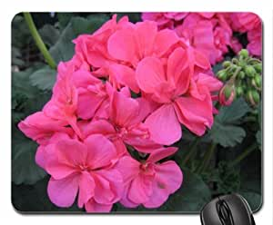 flowers pink geraniums Mouse Pad, Mousepad (Flowers Mouse Pad)