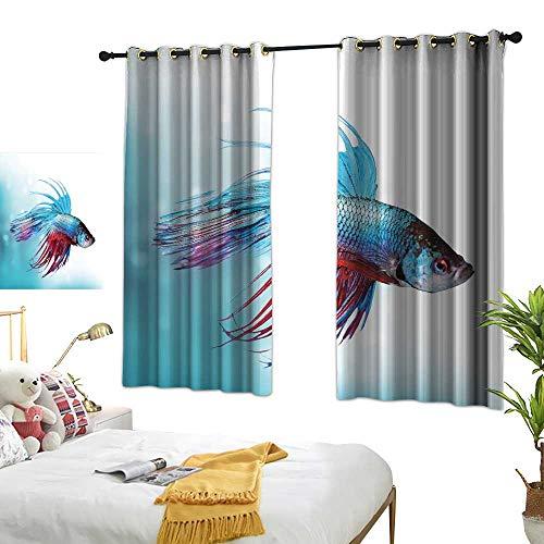 (Unpremoon Best Blackout Curtains Aquarium,Siamese Fighting Betta Fish Swimming in Aquarium Aggressive Sea Animal,Sky Blue Dark Coral W55 x L63 Blackout Drapes for Bedroom)