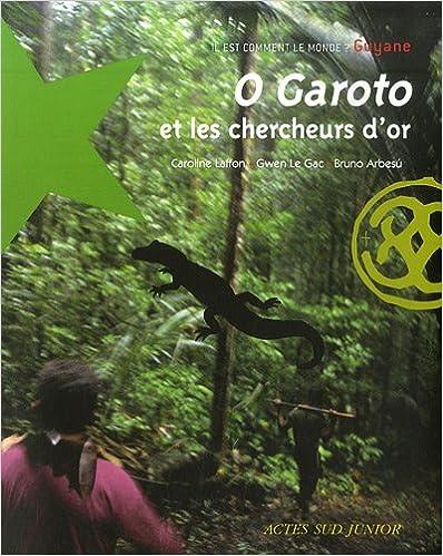 Lire un O Garoto et les chercheurs d'or : Guyane pdf epub