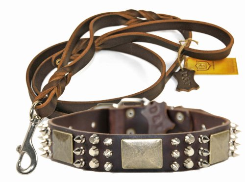 """Dean and Tyler Bundle – One """"Crazy Combo"""" Collar 22-Inch by 1-1/2-Inch With One Matching """"Braidy Bunch"""" Leash, 5 FT Stainless Steel Snap Hook – Brown"""