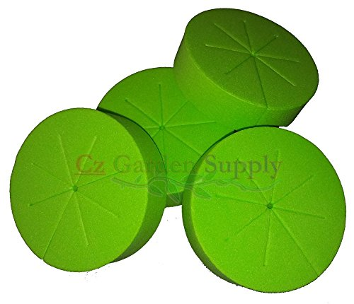Cloning Collars Inserts PREMIUM GRADE Foam Better Than Neoprene for Hydroponics Plant Germination in DIY Cloner & Clone Machines (fits 3 inch net pots/cups, GREEN - 25 pack)
