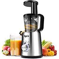 Argus Le Slow Masticating Juicer (Brushed Silver)