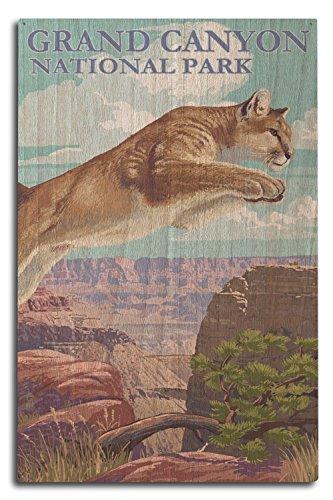 Lantern Press Grand Canyon National Park - Cougar Jumping (10x15 Wood Wall Sign, Wall Decor Ready to Hang)