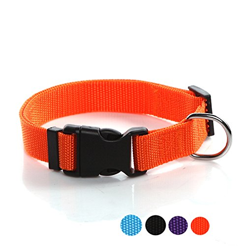 SALO Durable Nylon Dog Collar, Adjustable dog collars for Medium Large Dogs, 1 Inch Wide (Orange)