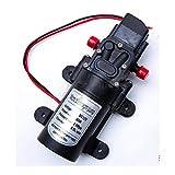 Labellevie DC12V 80W Motor 5.5L/Min High Pressure Diaphragm Water Self Priming Pump