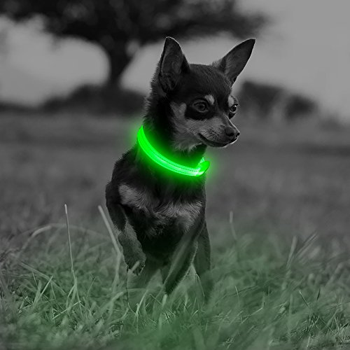 (Illumifun LED Dog Collar, USB Rechargeable Light Up Safety Collar, Nylon Lightweight Glow Dog Collar for Your Small Dogs& Cats(Green3, X-Small))