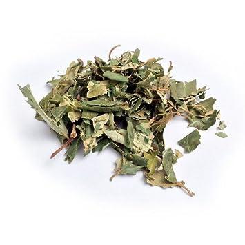 Sidr Leaves, Lote Tree, Jujube, Ziziphus Spina/Natural Herb 50 grams