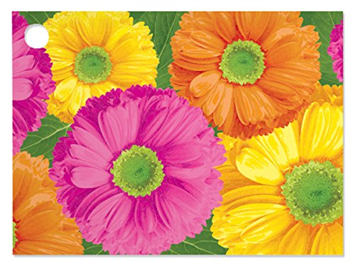 Gerber Daisies Theme Gift Cards (6 Pack ) 3-3/4x2-3/4'' by Nas