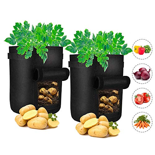 DegGod Plant Grow Bags, 2 Pack 5 Gallon Fabric Garden Potato Planter Bag with Flap Window, Large Nursery Pots for Planting Strawberries Vegetables (5 - Pot Grow Strawberries Strawberry