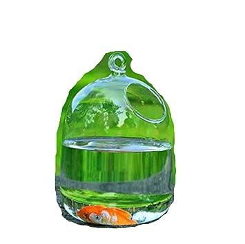 SHINA hidropónica colgar en la pared Burbuja acuario peces jarrón tanque Planta: Amazon.es: Hogar