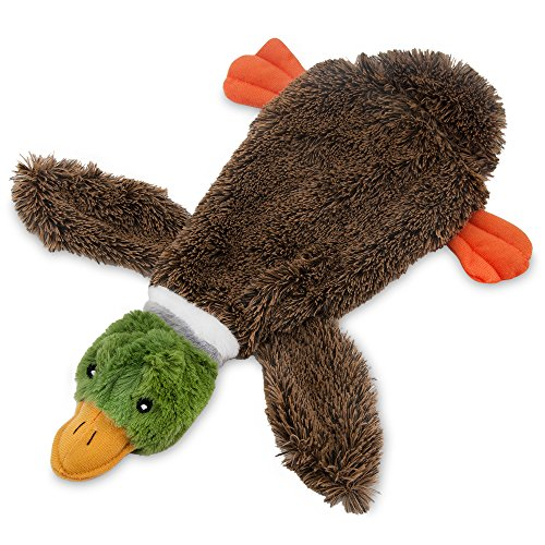 Best Pet Supplies 2-in-1 Fun Skin Stuffless Dog Squeak Toy, Small, Wild Duck