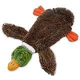 Best Pet Supplies 2-In-1 Fun Skin Stuffless Dog Squeak Toy, Large, Wild Duck